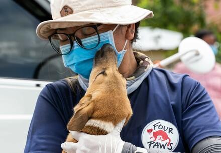 VIER VOETERS-medewerker met geredde hond