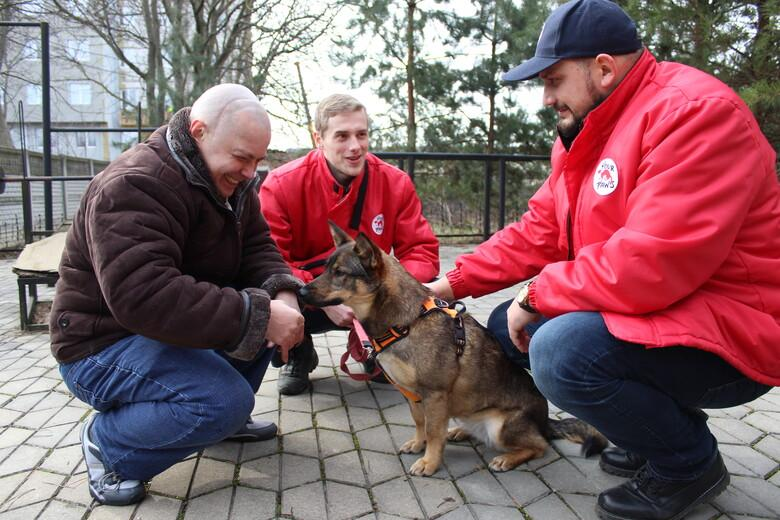 Dog Busia with Ian at an AAI therapy session