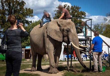 L'industrie du tourisme associé celui des animaux