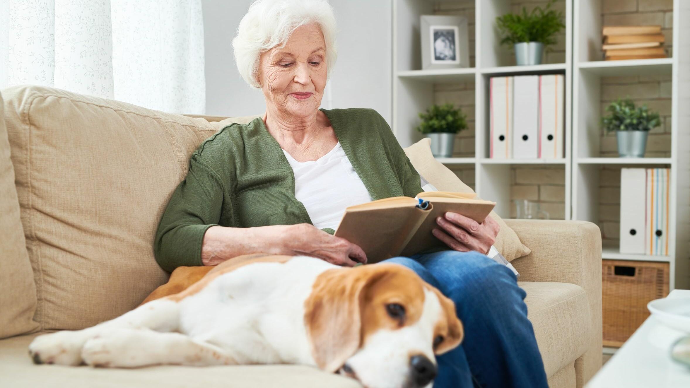 Куче и възрастна жена