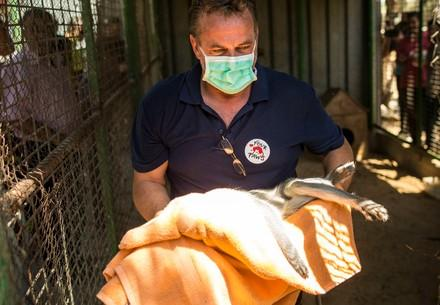 Veterinarian Dr Frank Göritz in Khan Younis Zoo in the Gaza Strip