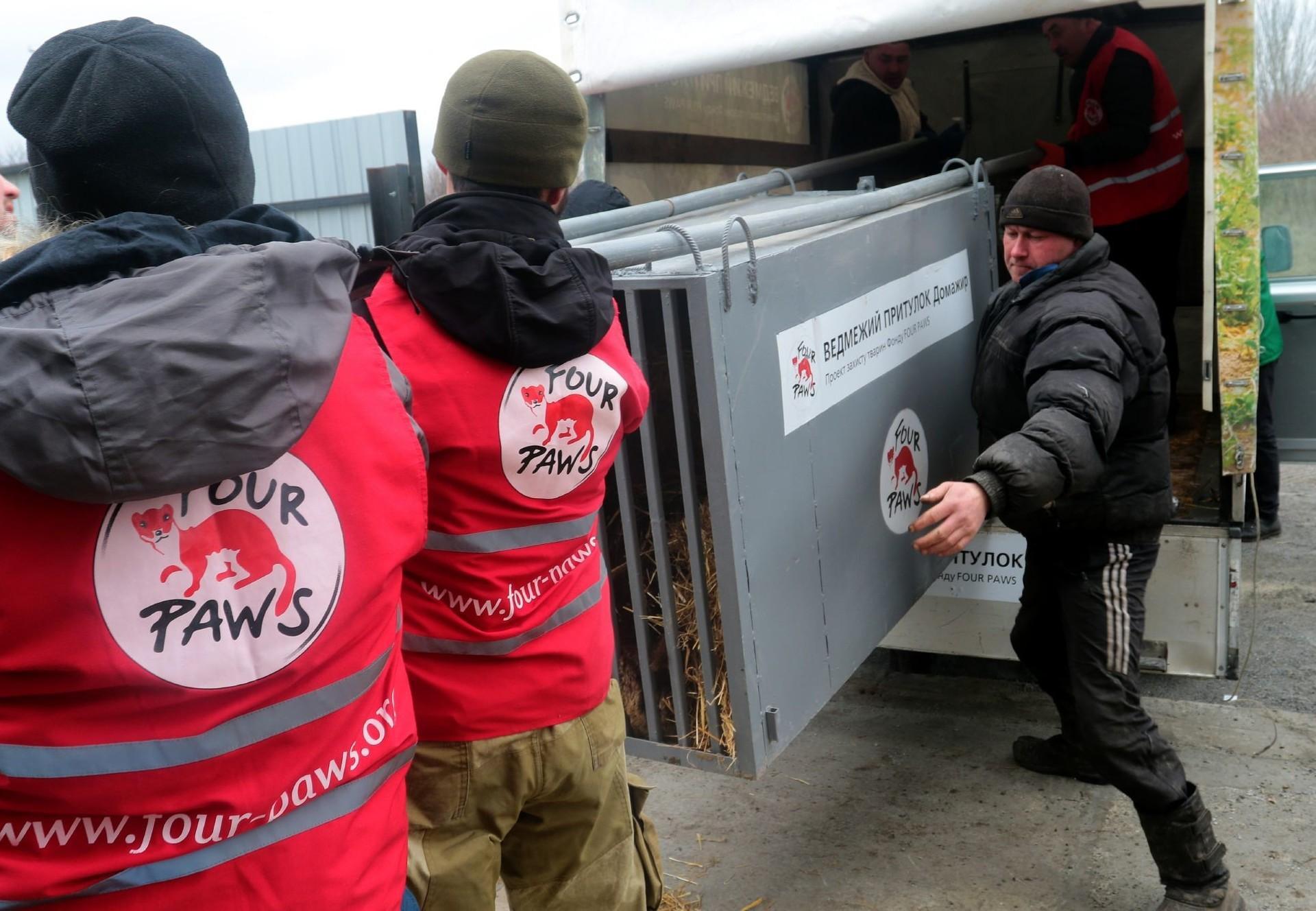 Rescue mission Ukriane