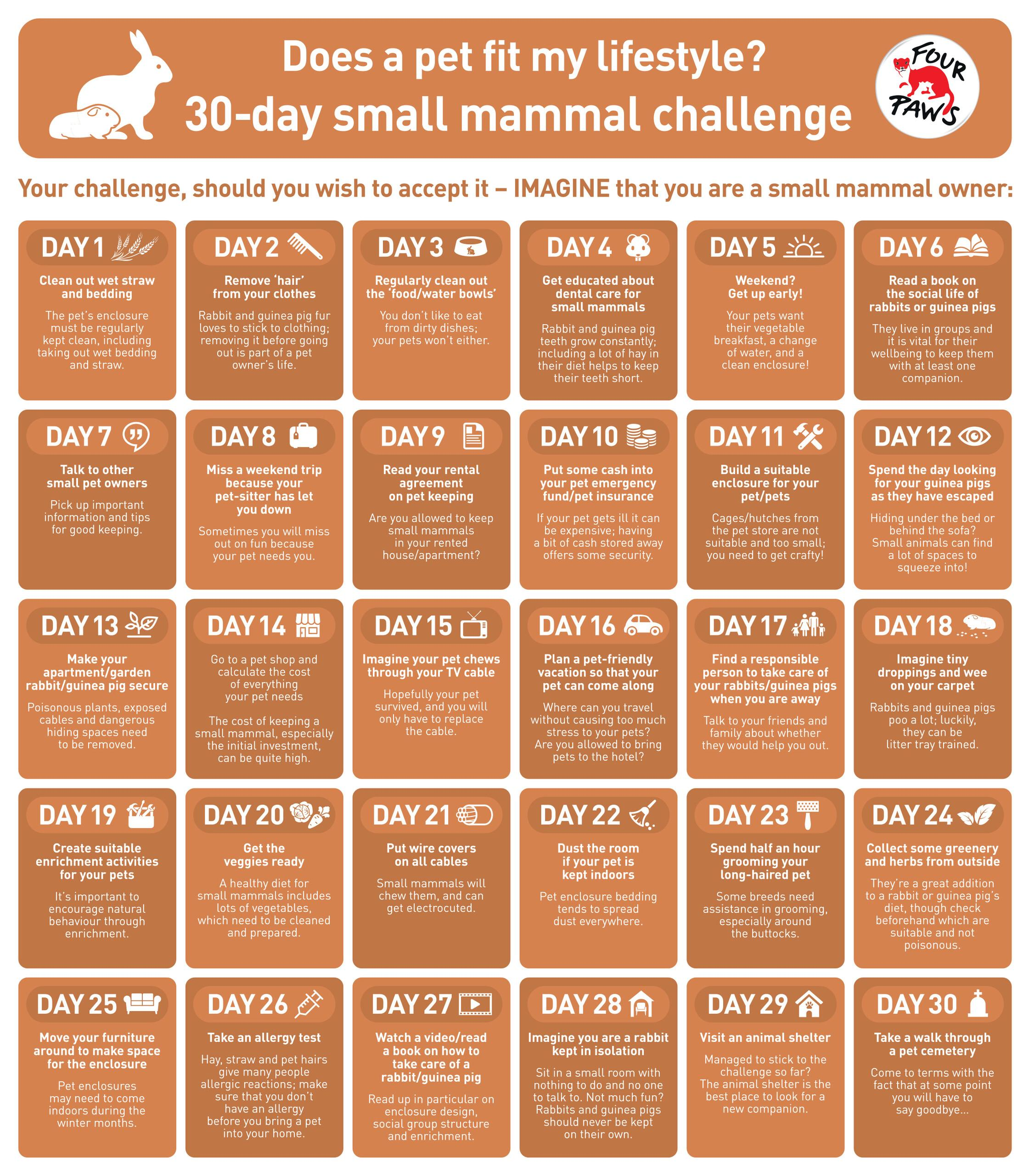 FOUR PAWS 30-day small mammal challenge