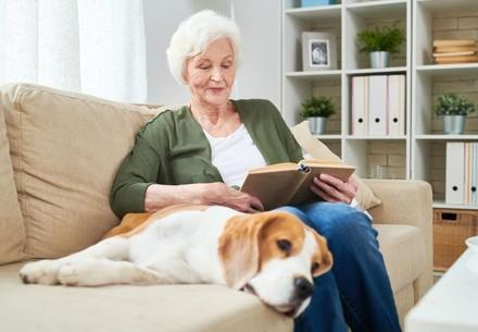 Elegant senior woman reading a book sitting on couch with pet dog beside her