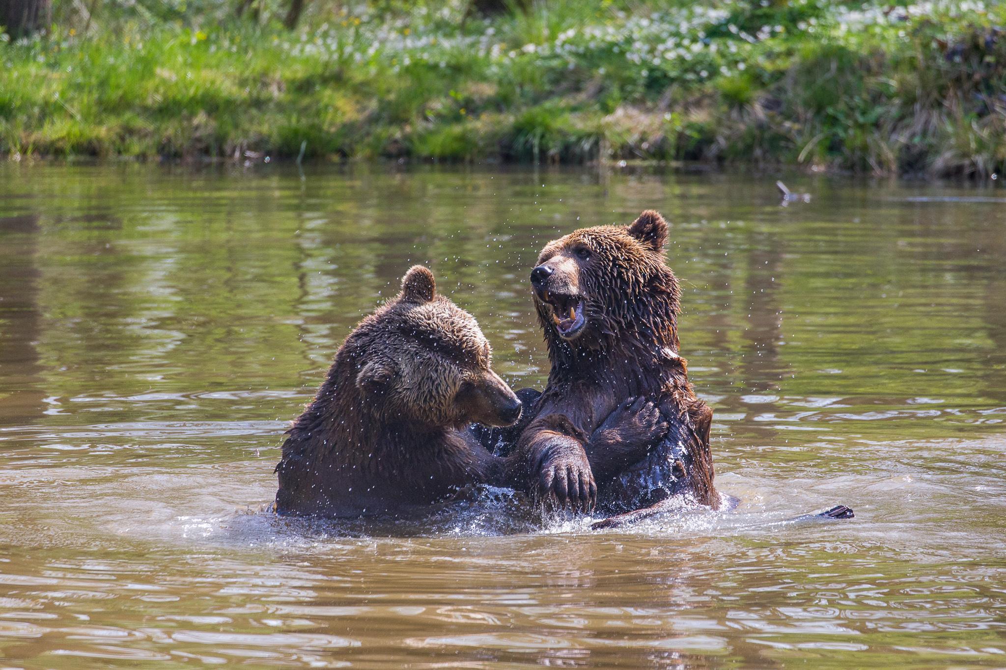 Ben und Felix spielen im Wasser