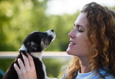 Un chien avec une dame