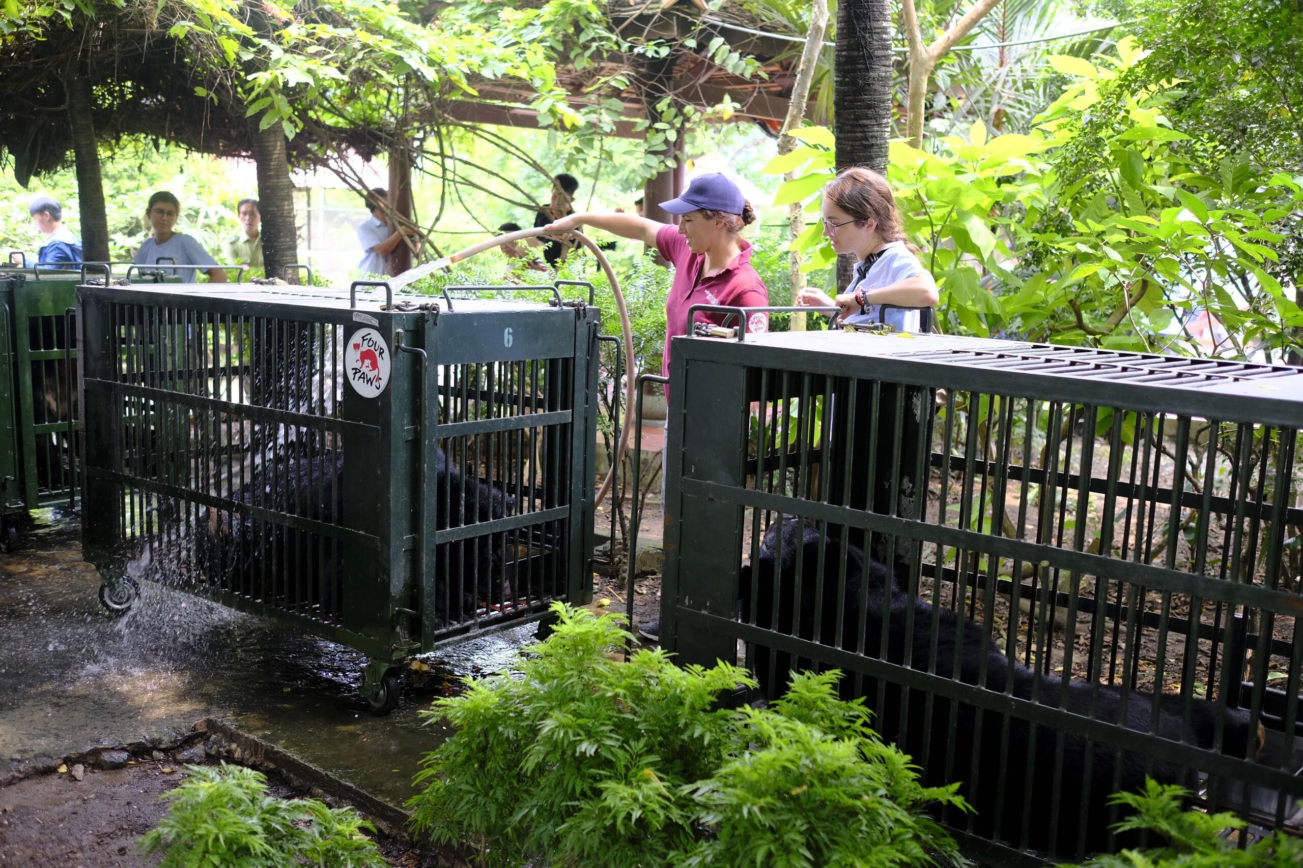Eine kühle dusche bei der Ankunft durch Dr. Johanna Painer
