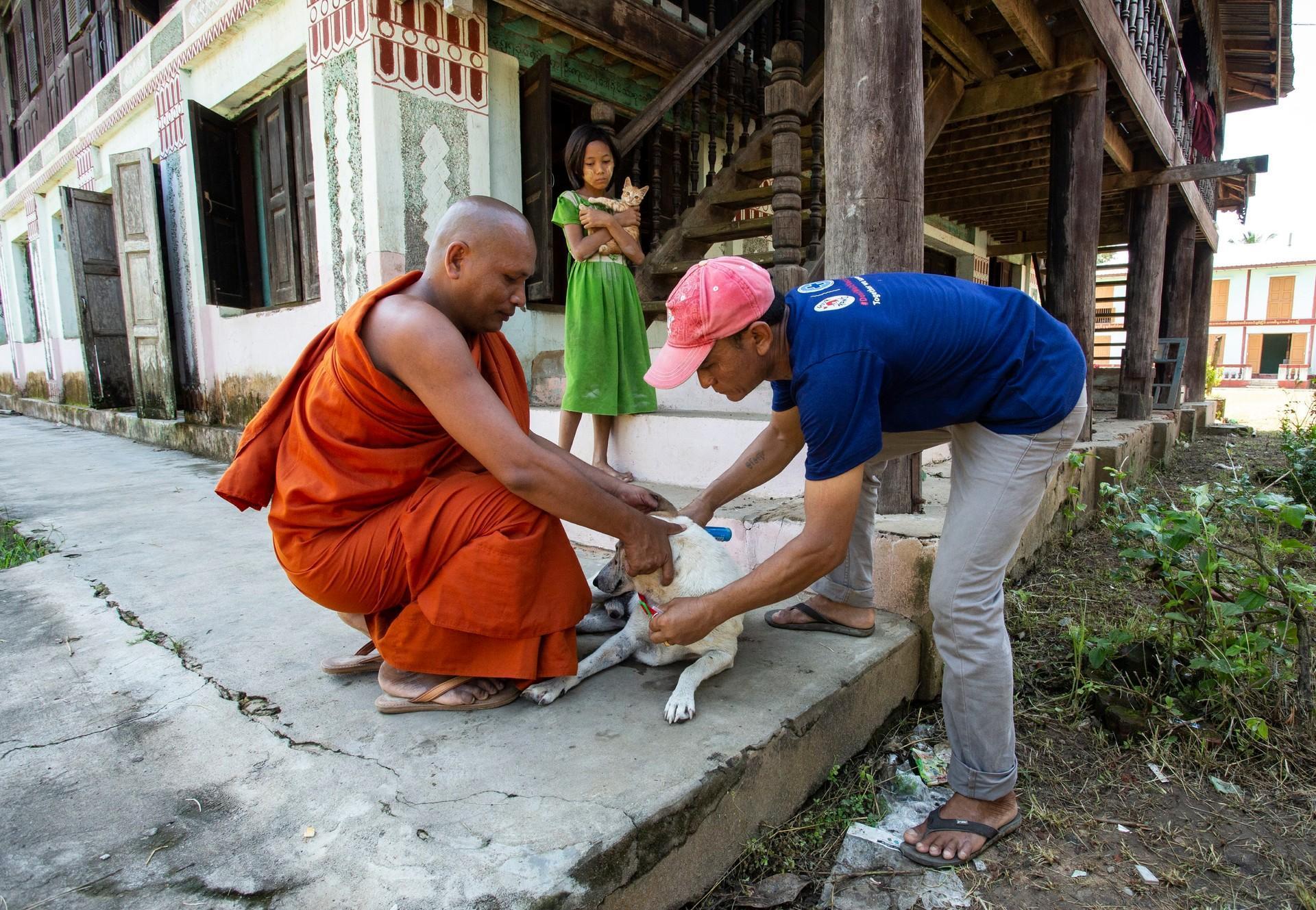 Journée mondiale de la rage : la lutte contre la rage se poursuit au Myanmar