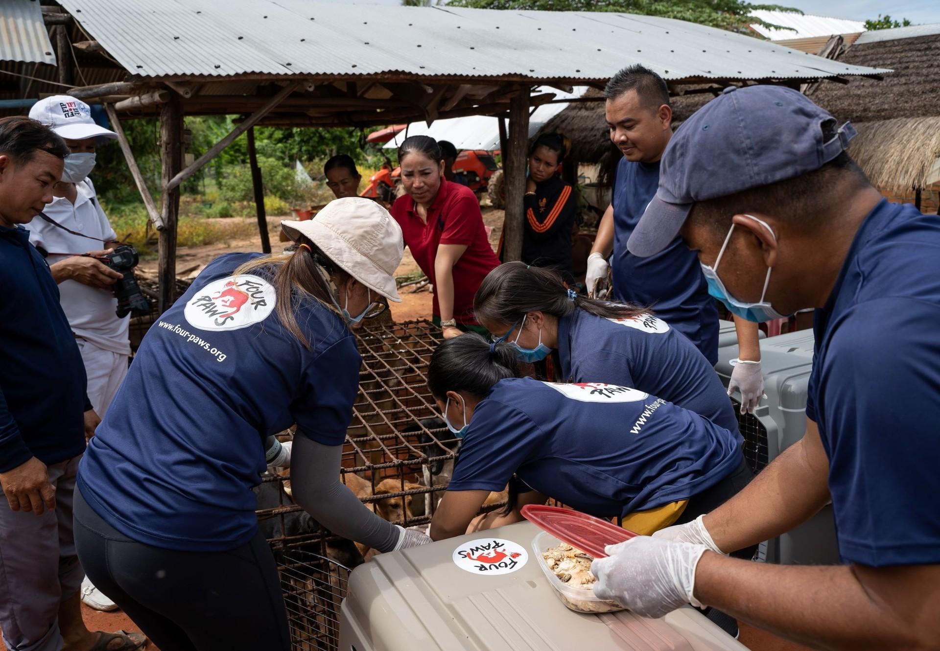 Das VIER PFOTEN Team während der Rettungsaktion.