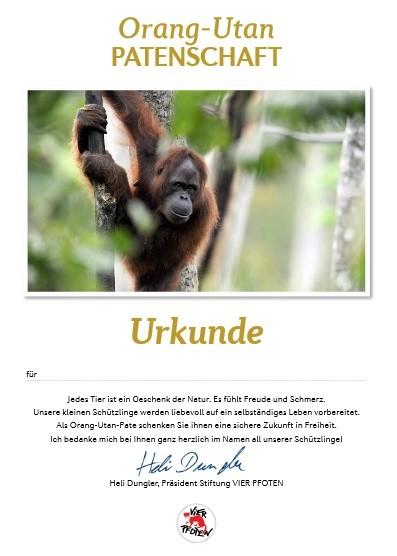 Urkunde für Orang-Utan-Patenschaft