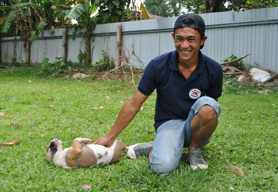 Mannelijk teamlid VIER VOETERS aait hond op buik op grasveldje