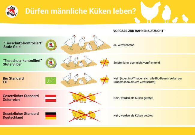 """""""Tierschutz-kontrolliert"""" Dürfen Bruderhähne leben"""