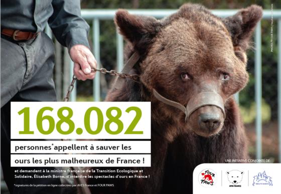 Pétition pour sauver les ours les plus tristes de France