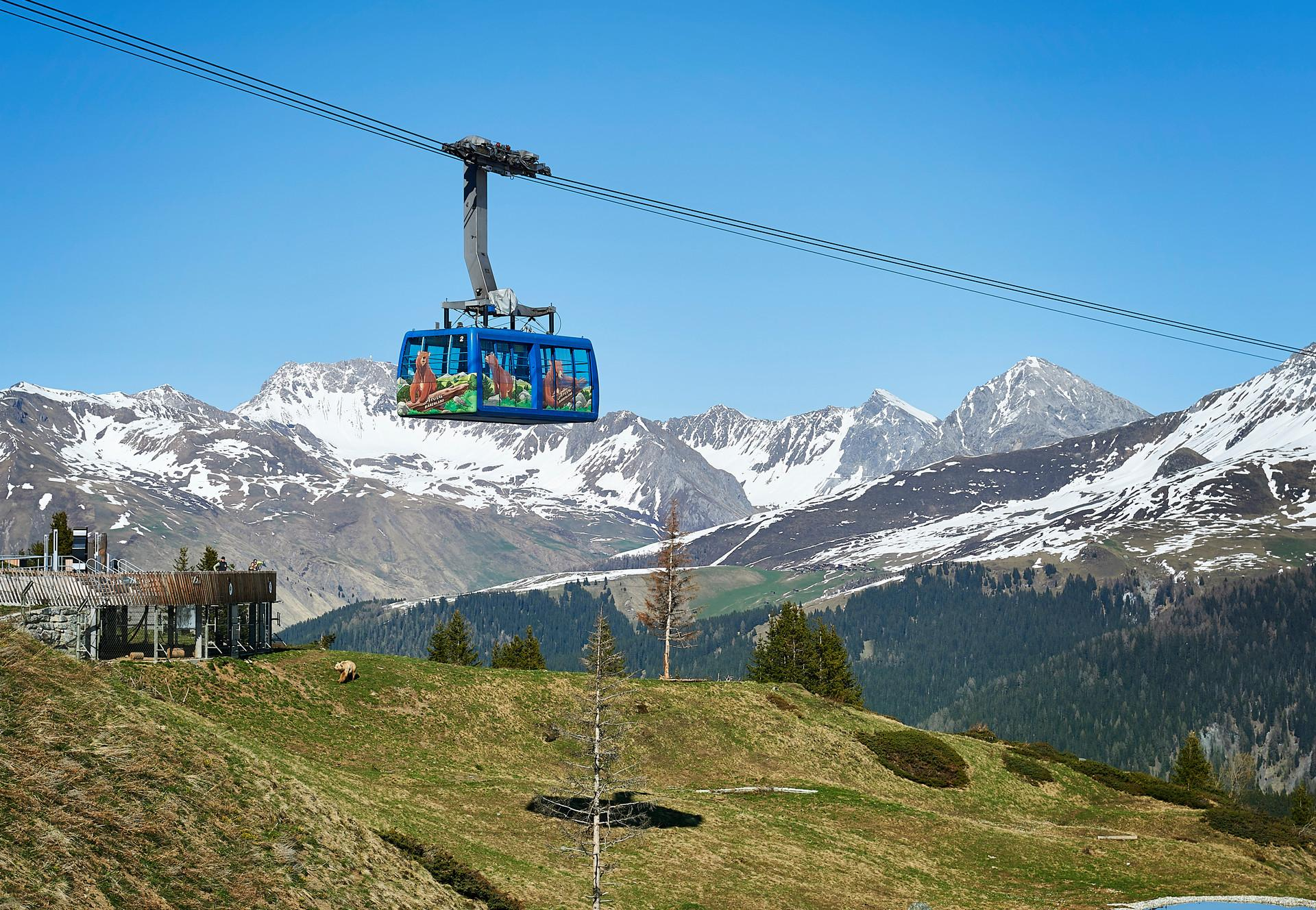 Gondola to the Arosa Bear Sanctuary