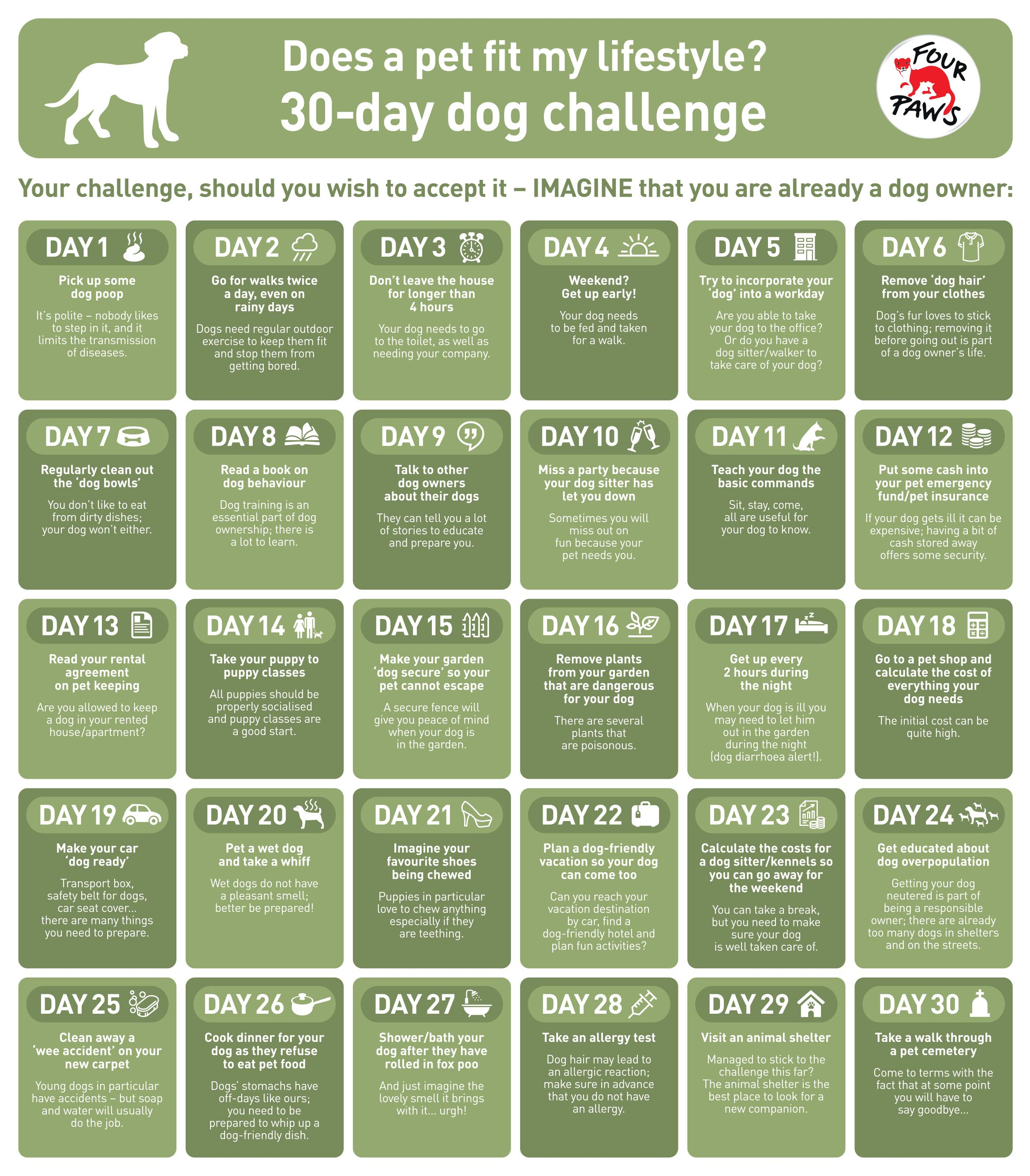 FOUR PAWS 30-day dog challenge