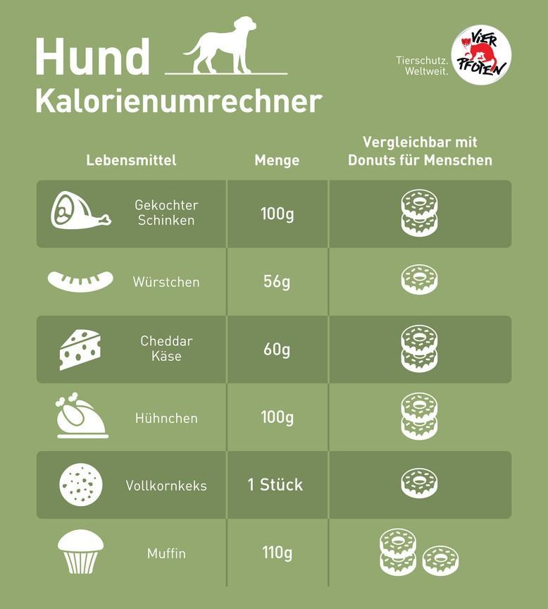 Dog calorie converter infographic