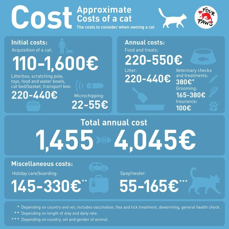 Approximate costs of a cat
