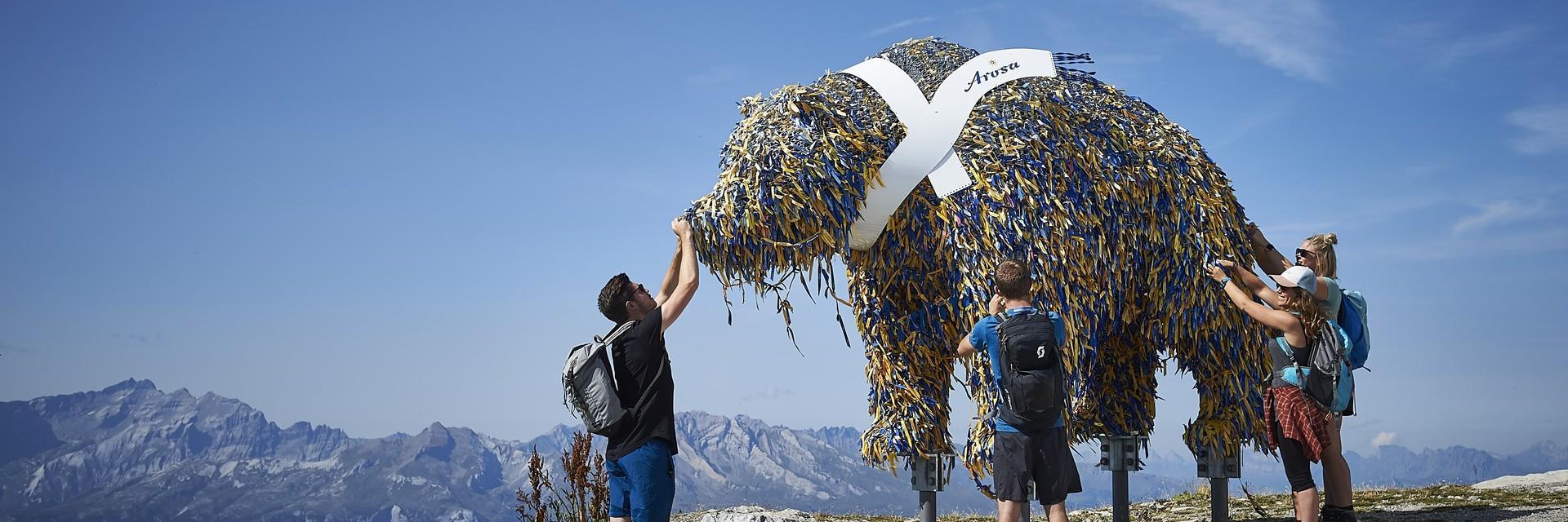 Weisshorn Bär auf dem Gipfel