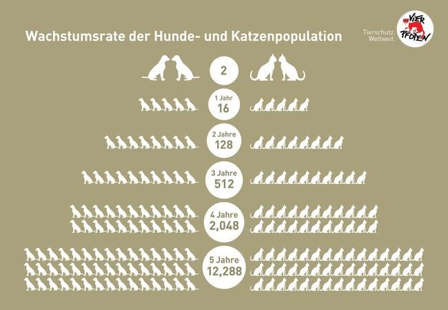 Wachstumsrate der Hunde- und Katzenpopulation