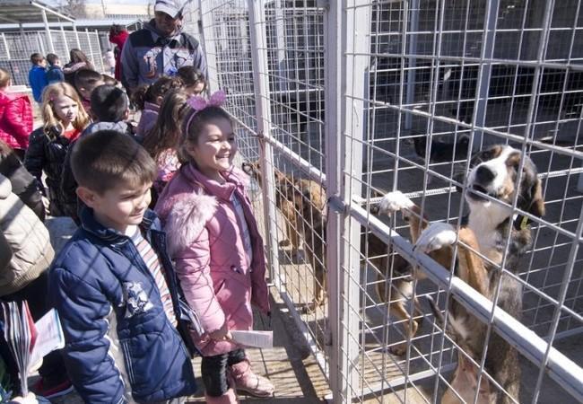 children-dogs-cage