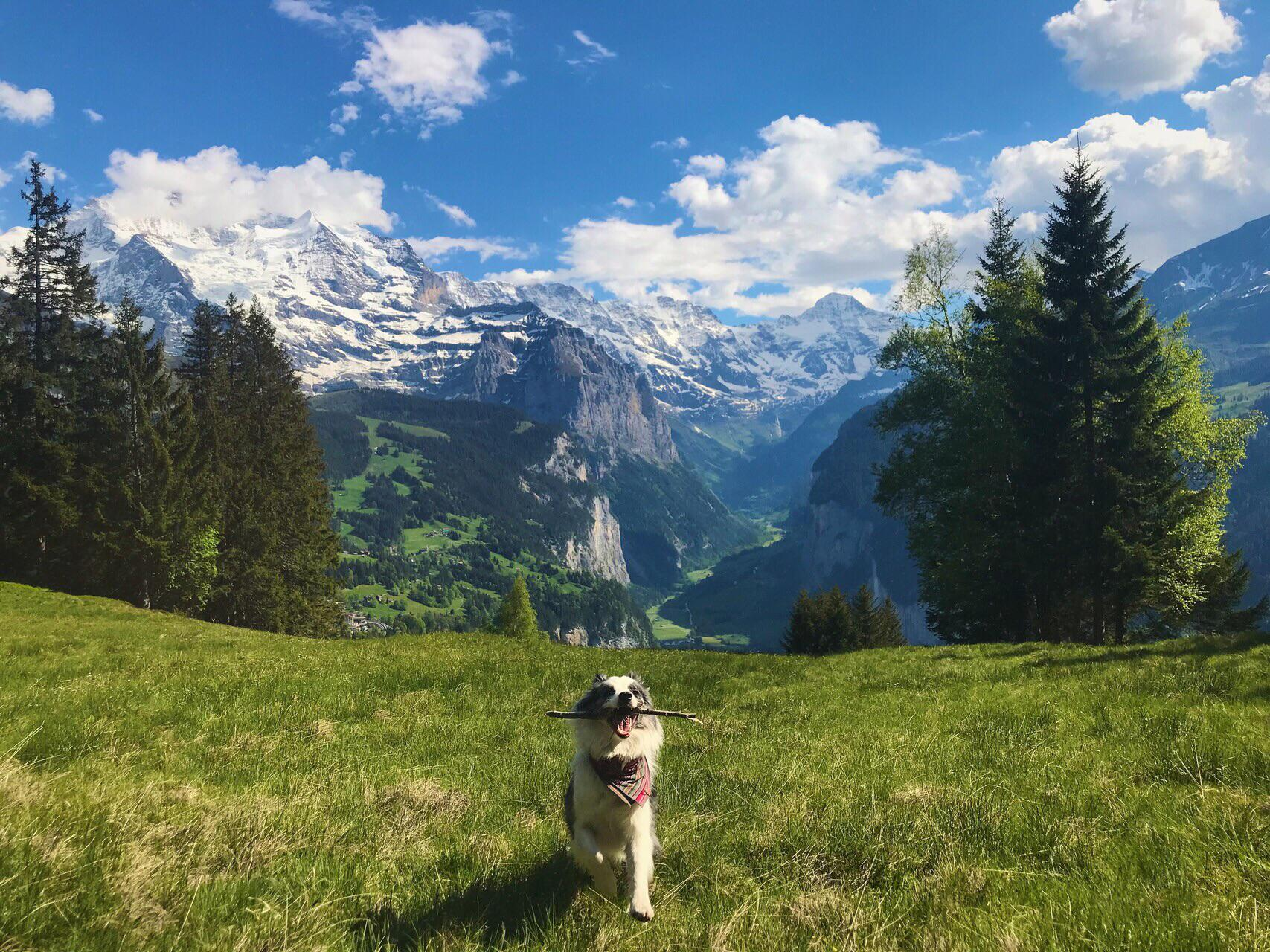 Lauterbrunnen and Indie