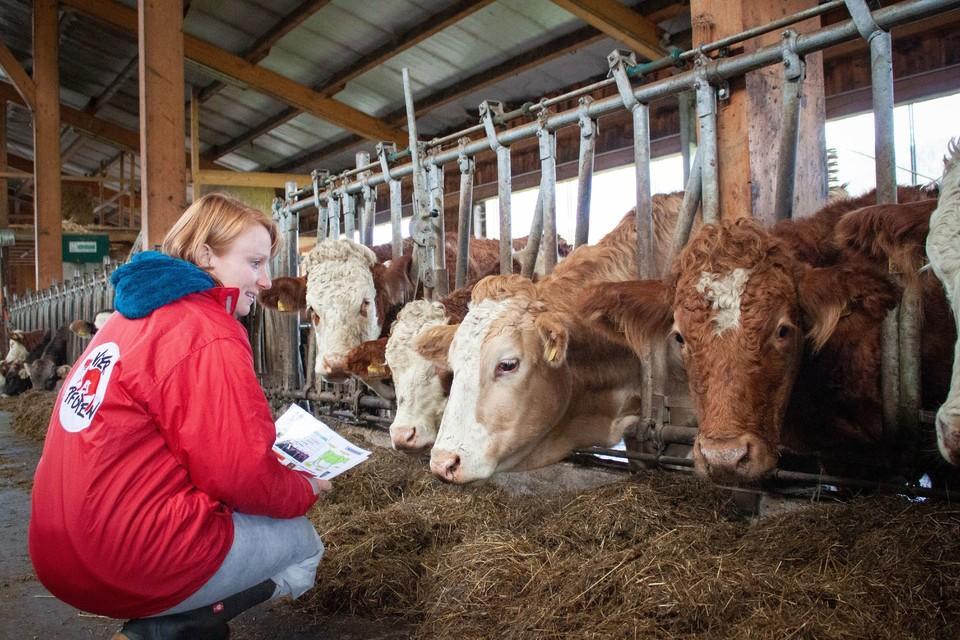 Direkt an den Betrieben werden die Lebensbedingungen der Tiere kontrolliert
