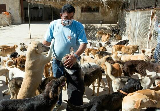 Dr. Amir Khalil im Tierheim