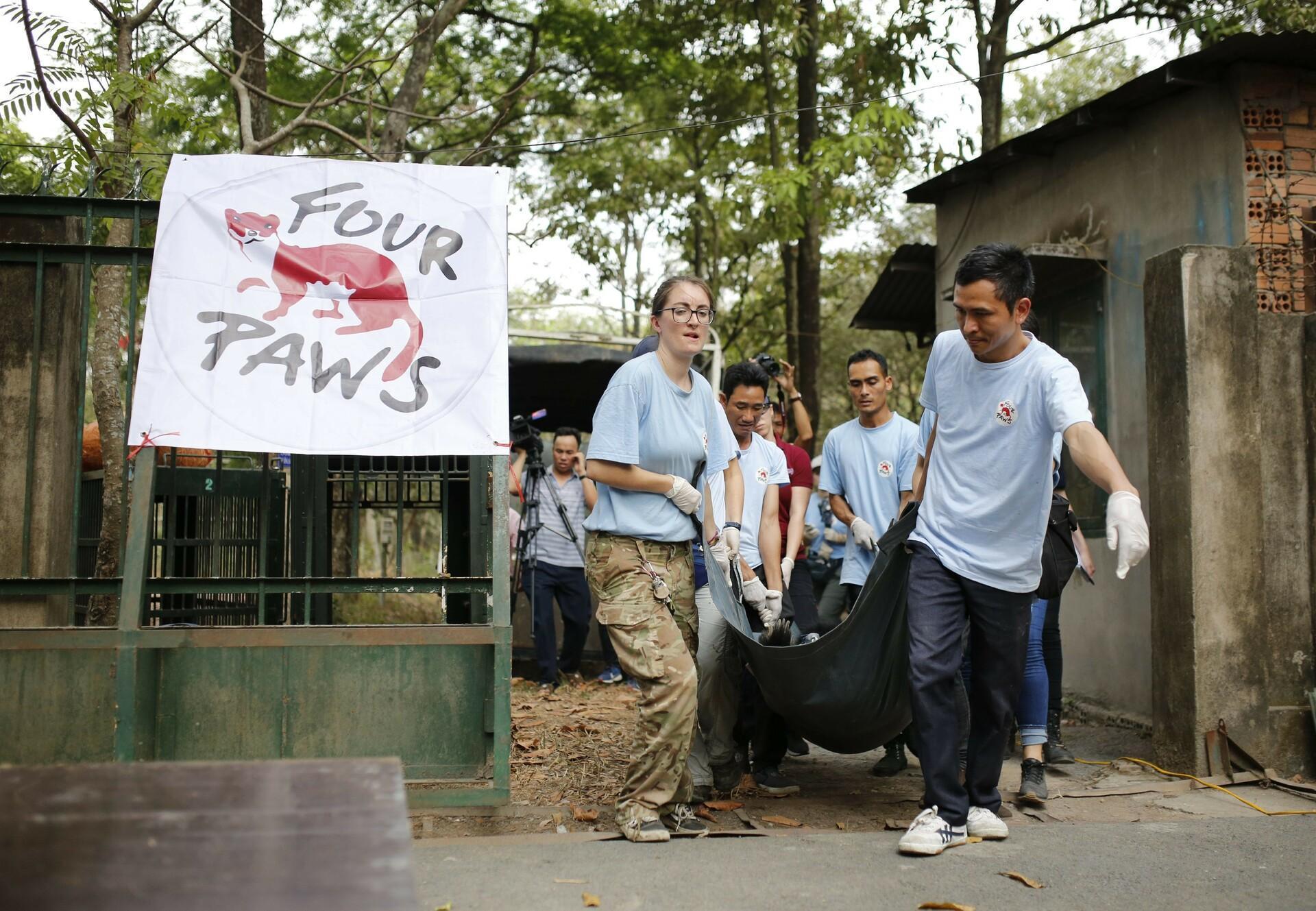 Rescue mission in Vietnam
