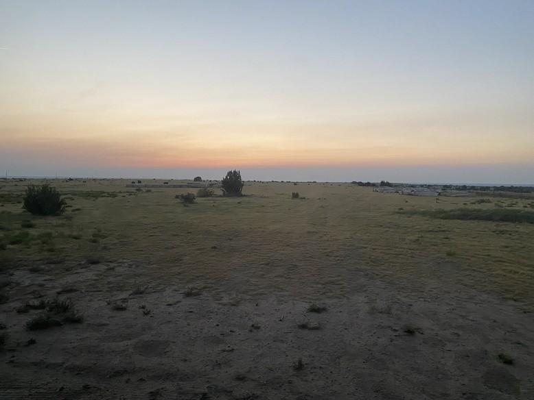 The Wild Animal Sanctuary at sunrise