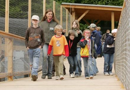 Eine Kindergruppe bei einer Führung durch den BÄRENWALD Arbesbach.