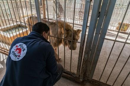 Soforthilfe für Tiere in Not