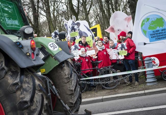 VIER PFOTEN auf der Wir haben es satt Demo im Januar 2020 in Berlin
