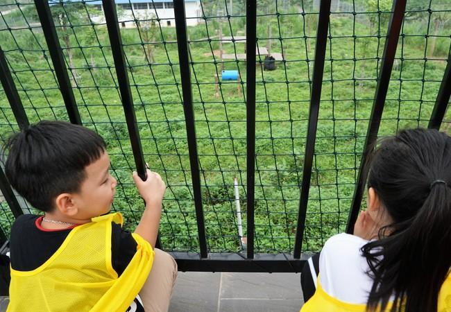 Observe bears from skywalk Ninh Binh