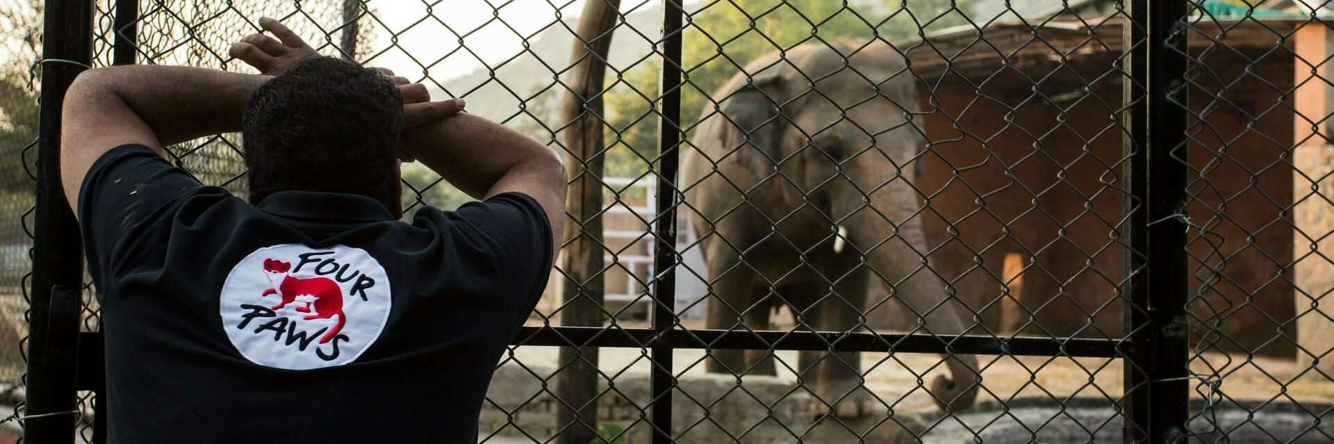#FreeKaavan