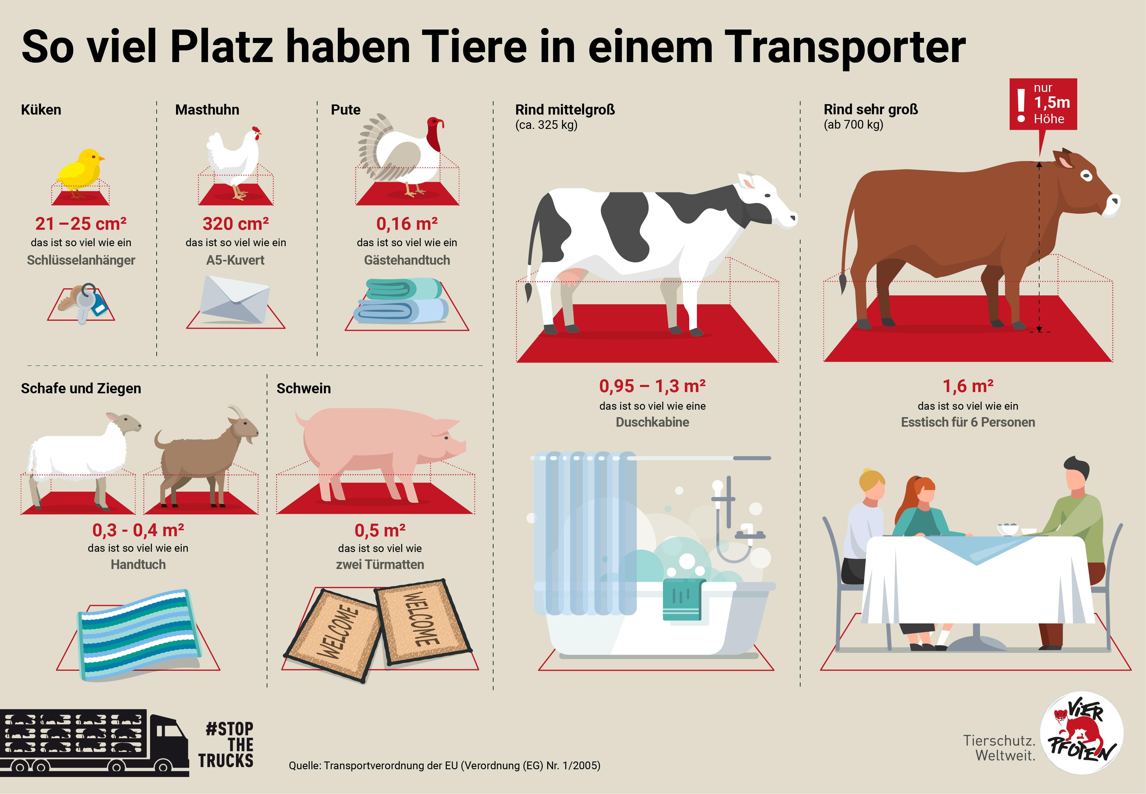 Platz im Tiertransporter