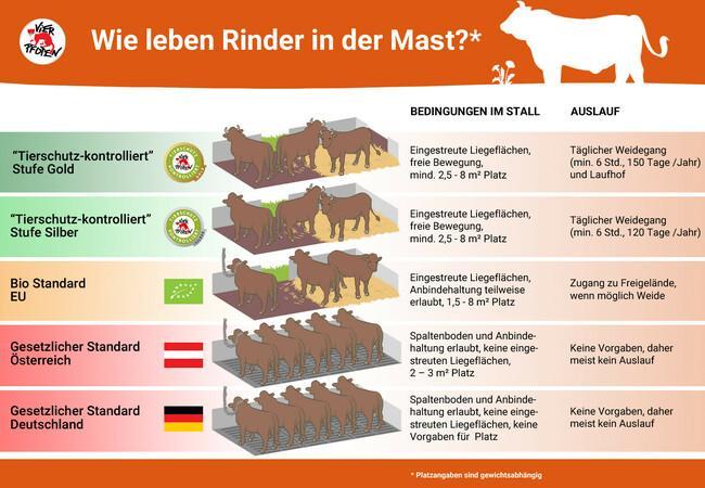 """""""Tierschutz-kontrolliert"""" Wie leben Rinder in der Mast"""