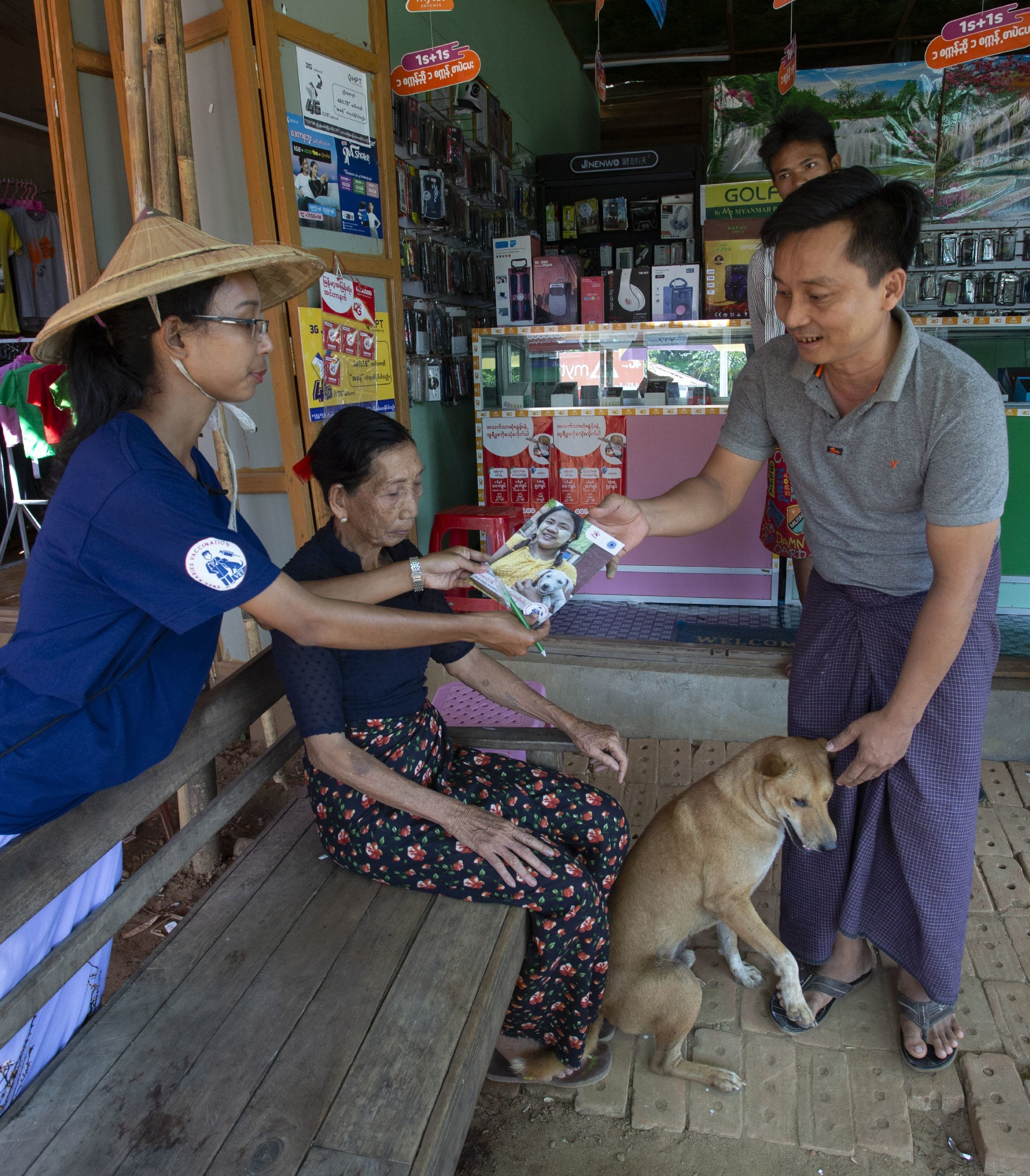 How we protect dogs and cats in Southeast Asia