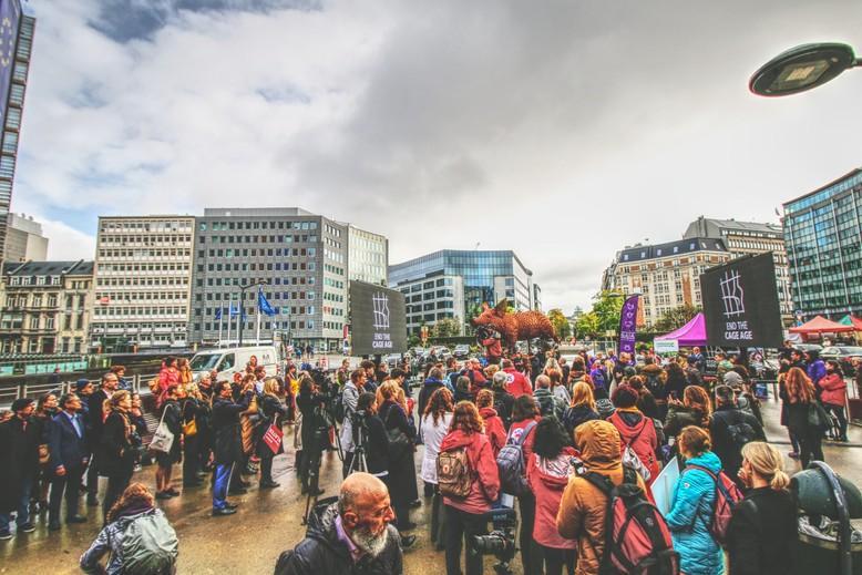 End The Cage Age celebration in Brüssel