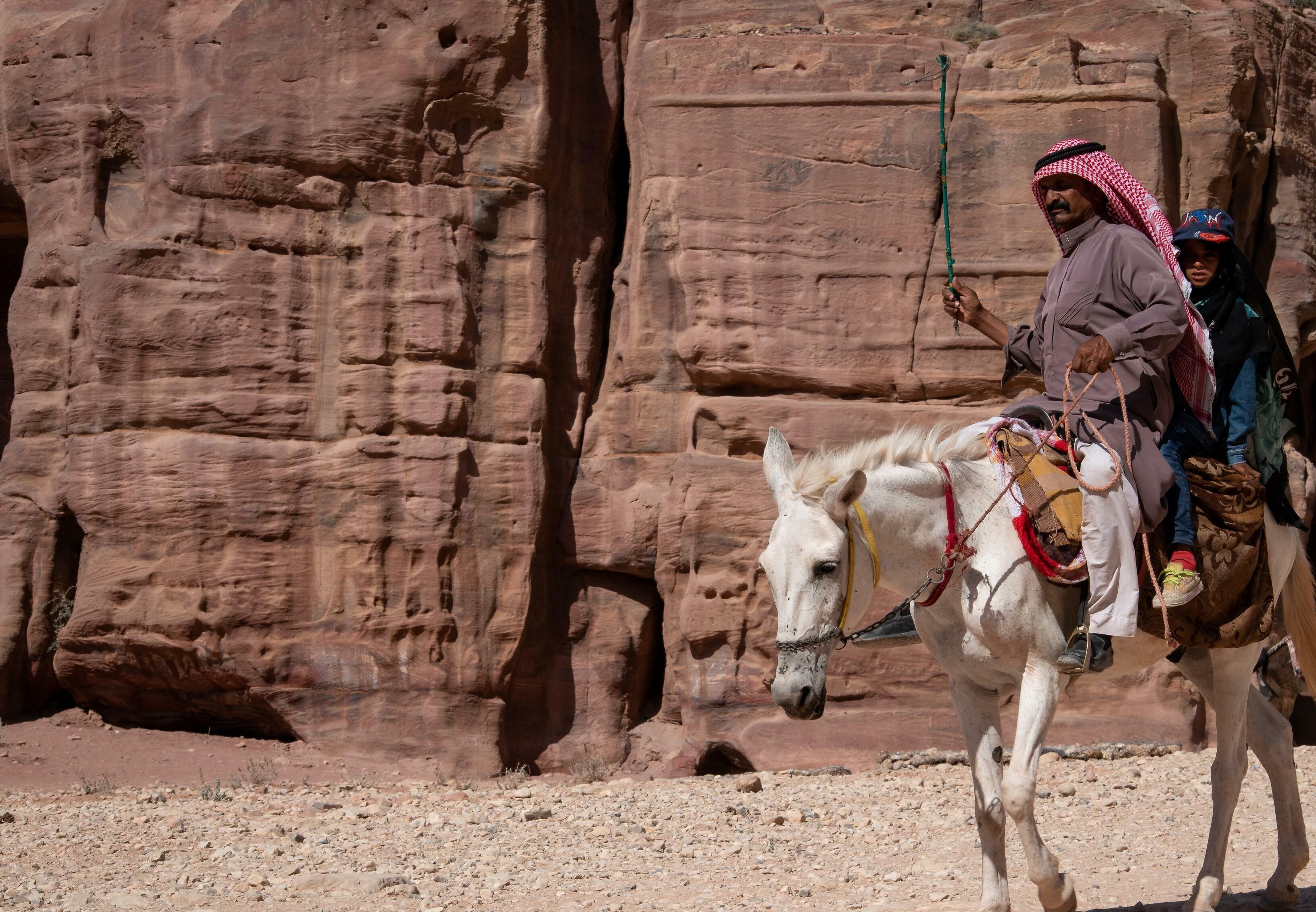 Ein Pferd wird im Petra Park gepeitscht