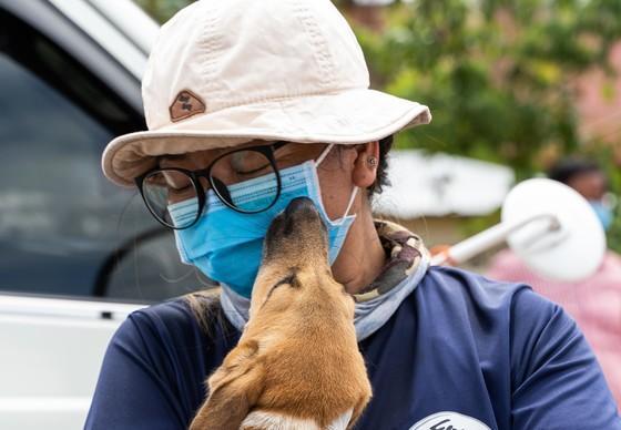 Un chien sauvé par QUATRE PATTES