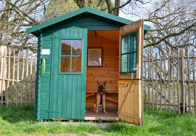 Schutzhütte auf dem Hundespielplatz