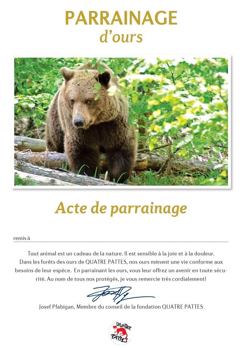 Certificat de parrainage des ours