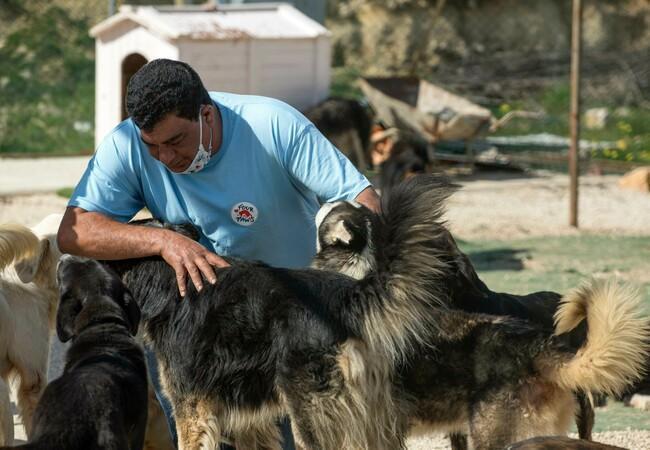 Mitarbeiter mit Hunden