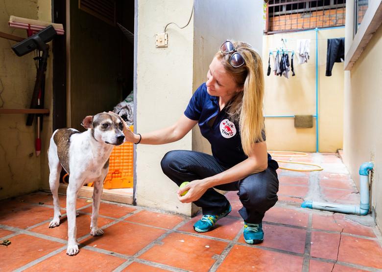 Hund Bobby wurde gerettet