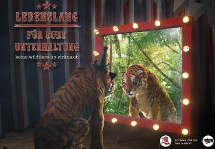 Kampagnenvisual Keine Wildtiere im Zirkus