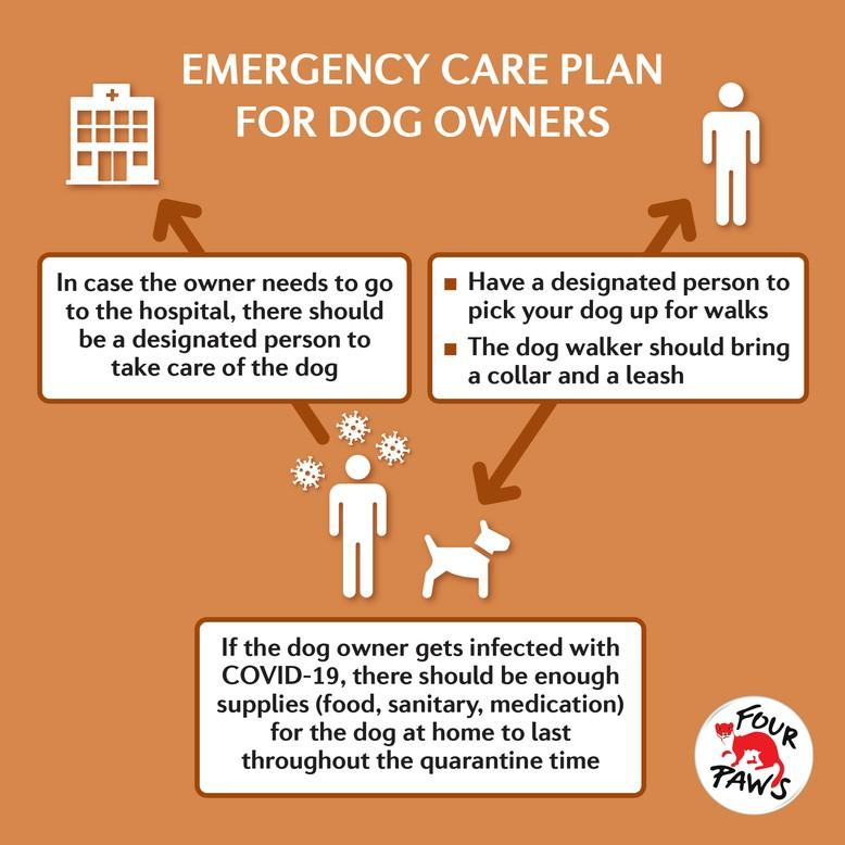 Emergency Care Plan Infographic