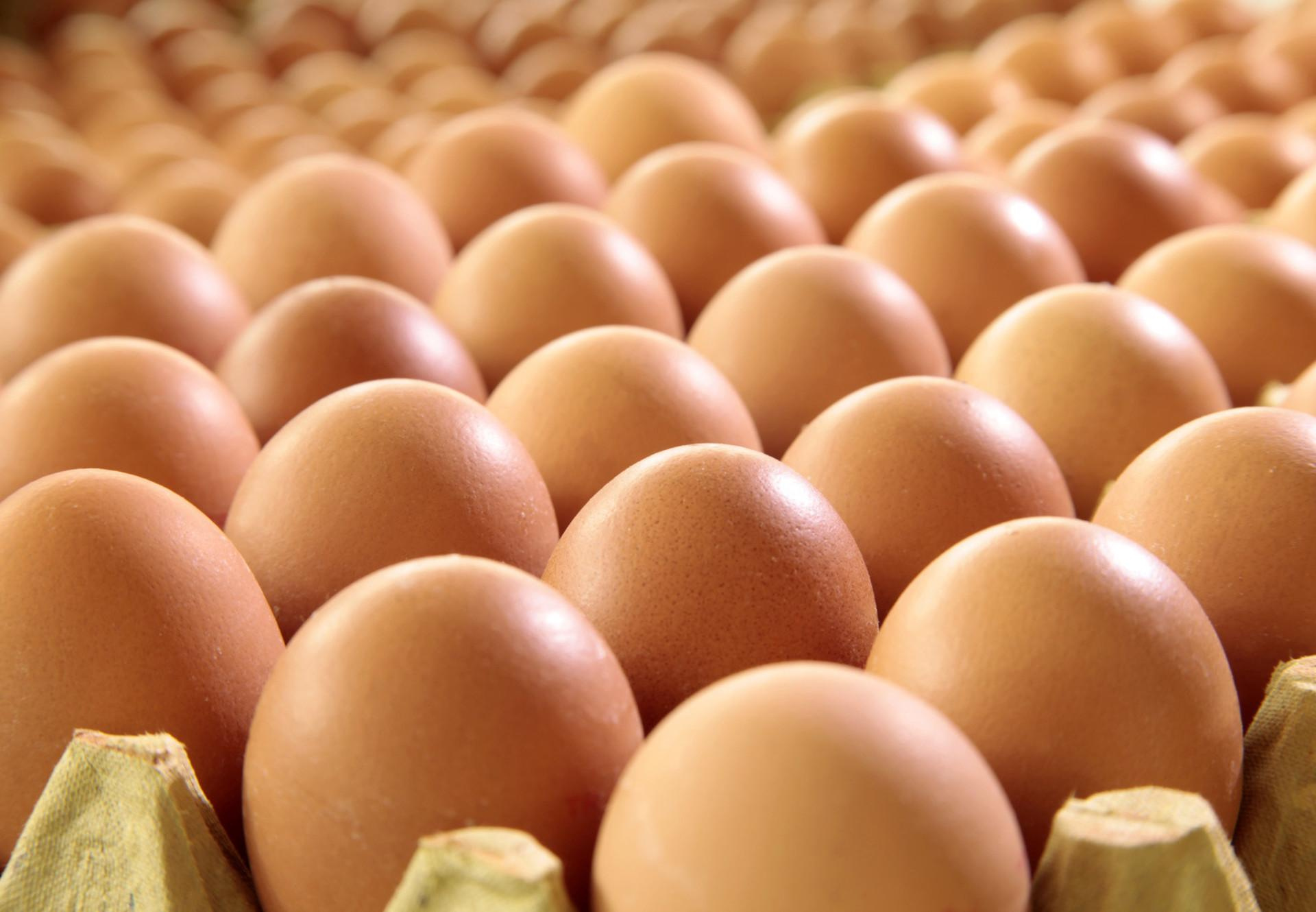 Hidden Cage Eggs in Processed Food - Farm Animals - Topics ...