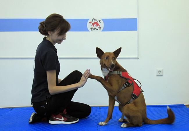 Dog Lisa with her handler Tetyana