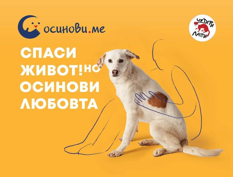 dog-text-yellow-background
