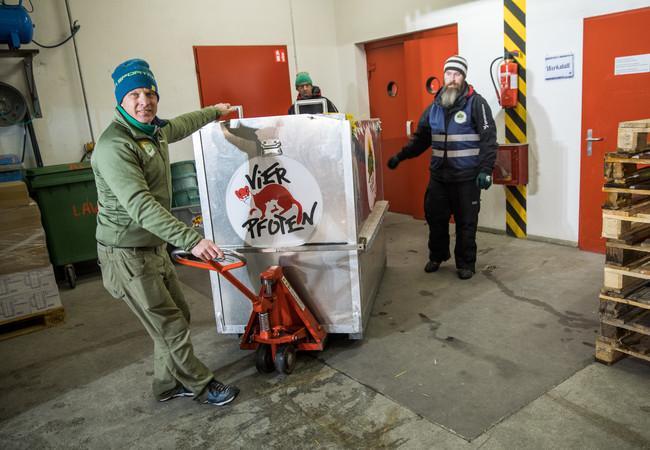 Die Bären werden in den speziellen Transportboxen in ihr neues Zuhause gebracht
